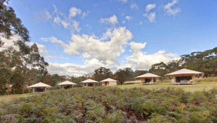 Cave Hill Glamping