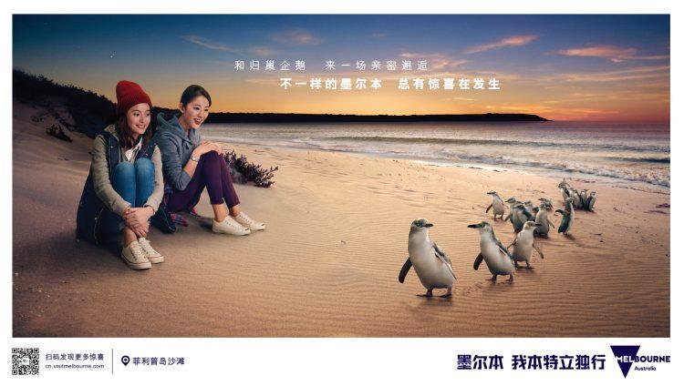 China Campaign Phillip Island  Horizonal
