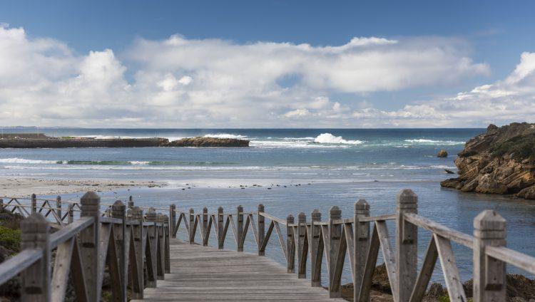 Regional Insights Great Ocean Road 5
