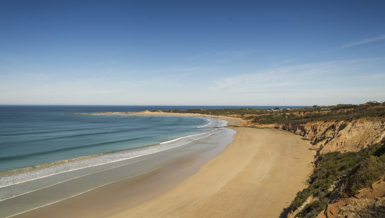 Regional Insights Great Ocean Road 8